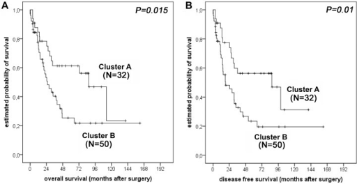 Survival analysis for oesophageal adenocarcinoma patients.Kaplan-Meier survival curves for 82 patients from Clusters A and B with respect to overall survival (A) and disease-free survival (B). Patients who died within the first month after surgery (N = 5) were excluded from the survival analysis.