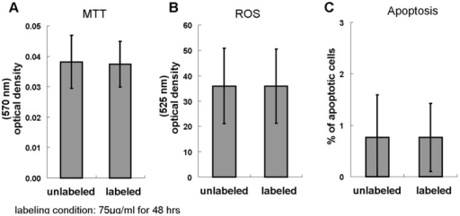No adverse effects of the proposed method in fundamental cellular functions.(A) Comparable viability between unlabeled and labeled cells. (B) Comparable ROS production. (C) Comparable apoptosis.