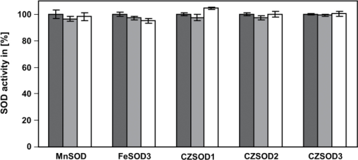 Effect of GSNO on enzyme activity of cysteine containing SODs. Recombinant MnSOD, FeSOD3, Cu/ZnSOD1, Cu/ZnSOD2, and Cu/ZnSOD3 were treated with 250 µM (light grey) and 500 µM (white) GSNO for 20min (RT, in dark). Control treatment was done with 500 µM GSNO in presence of 5mM DTT (dark grey). Afterwards the activity was determined. Treatment with light-inactivated GSNO was used as control. These activities were set to 100%. Values represent means±SD of three independent experiments.