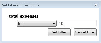Filtering condition input form – data partitioning operation.