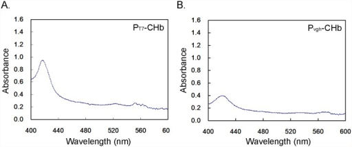 CO differential spectrum assays of the CHb in four recombinant cultures in the bioreactor.A: The recombinant PT7-CHb; B: The recombinant Pvgh-CHb.