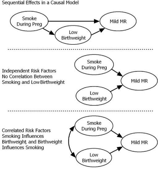 Different Relationships Among Multiple Risk Factors.