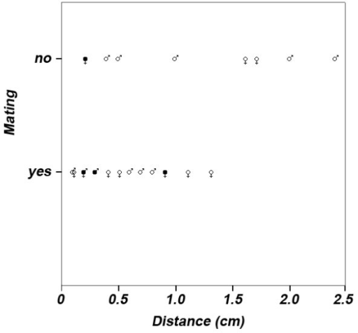 Likelihood to mate. The likelihood to mate in P. taeniatus was significantly explained by the relative body size distance of pairs (see equation 1 and Results section for statistics). An equal distance was measured in four pairs (filled gender symbols), thus 20 instead of 24 data points are shown. Gender symbols reveal whether the male (male symbol) or the female (female symbol) was relatively larger in a pair. In one case an equal distance between pairs with a relatively larger male and a relatively larger female was measured (male and female symbol combined).