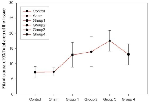 There was a significant increase in hepatic collagen amount in BDL groups histomorphometricaly compared to the control and sham groups (P < 0.01). Collagen peak was found at the end of the third week when compared to the groups 1, 2 and 4 (P < 0.05).