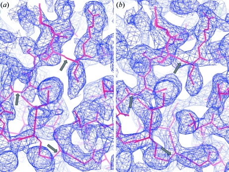 The superposition of the rigid-body-refined insulin molecule model and the S-SAD-phased experimental 2f                  o − f                  c electron-density map at 50.0–2.5 Å resolution contoured at 1.0σ. (a) The map was calculated using the regular-exposed data of crystal 1. The arrow signs in the figure indicate the missing density at the main-chain area. (b) The map was calculated using the MDS-exposed data of crystal 1.