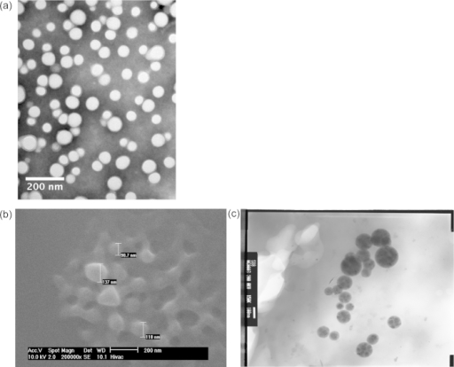 (a) TEM images of nanoparticles from batch B negatively stained with phosphotungstic acid. ESEM (b) and TEM (c) of polymer nanoparticles from batch C. The images were obtained after preparing a suspension of nanoparticles in water. The images show the size and morphology of the nanoparticles.
