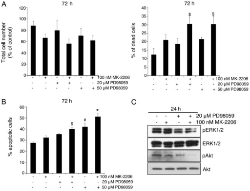 The combination of Akt inhibitor MK-2206 and MEK inhibitor PD98059 induces cell death in gemcitabine-resistant (GR) AsPC-1 cells. (A and B) GR AsPC-1 cells were treated with MK-2206 and/or PD98059 and analyzed for total cell number and percentage of dead cells by trypan blue assay, and for percentage of apoptotic cell death by Annexin V/propidium iodide (PI) staining following the procedures detailed in Materials and methods. *P≤0.001, #p≤0.01 and $p≤0.05. (C) GR AsPC-1 cells were treated with MK-2206 and PD98059 and analyzed for phosphorylated and total ERK1/2 and Akt.