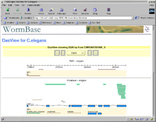 DasView A screen-shot of the current version of DasView. The view is on Chromosome II of WormBase.