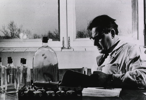 <p>Interior view: Professor Abelev is sitting at a desk on which are several glass containers; he is shown half-length in left profile, he is wearing glasses and a white lab coat, and is reading.</p>