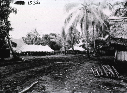 <p>Tents are pitched amidst palm trees on a muddy field.</p>