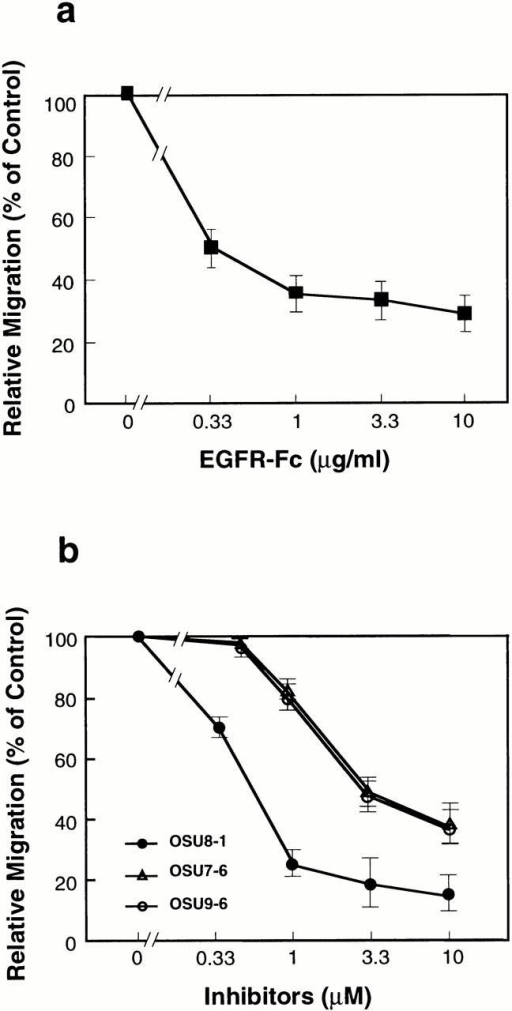 Dose effects of EGFR-Fc (a) and OSU8-1, OSU7-6, and OSU9-6 (b) on keratinocyte migration after wounding. Each point is the average of quadruplicate measurements. Migration was evaluated by the distance between the furthest migrated cell and the scraped edge.