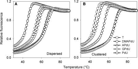 Representative fluorescence melting curves showing the interaction of the multiply substituted dispersed (A) or clustered (B) TFOs with their intended duplex target site. The TFOs contained T (squares), DMAPdU (circles), APdU (triangles), GPdU (diamonds) or PdU (hexagons). The experiments were performed in 50 mM sodium acetate pH 6.0, containing 200 mM NaCl. The complexes were heated and cooled at a rate of 0.2°C min−1.