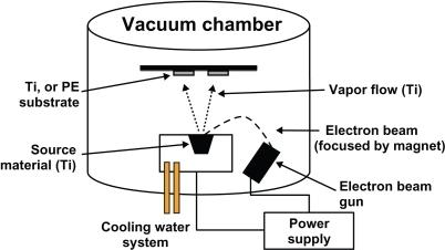Schematic diagram of the electron beam evaporation proc