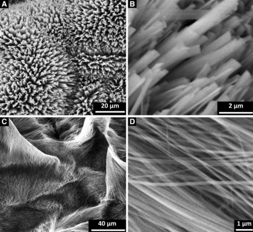 SEM images of Na7(H3O)Nb6O19·14H2O precursor prepared at different NaOH concentrations: a, b 0.5–0.8 M, and c, d 1–1.5 M.