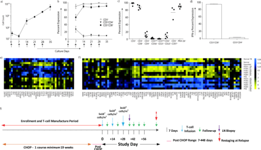Characterization of T-cell infusion products.(a) The mean inferred cell count for 6 (of the 8) canines infused with T cells that were propagated over 28–35 days on γ-irradiated OKT3-loaded aAPC (CLN4) in presence of rhIL-2/IL-21. Arrows represent days aAPC were added. (b) Percent expression of CD4+ and CD8+ T-cell subsets during propagation on γ-irradiated aAPC in the presence of rhIL-2/IL-21. Arrows represent days aAPC were added. (c) Immunophenotype of the T-cell infusion products (n = 6) at the time of cryopreservation. The horizontal lines describe mean percentage expression. (d) T-cell infusion products were tested for IFN-γ production after stimulation with OKT3-loaded aAPC in the presence of rhIL-2/IL-21 (n = 3). Analysis of multiplexed digital gene profiling of PB-derived canine T cells before and after propagation from healthy subjects (n = 2) and canines with NHL (n = 6) identified mRNA species which were either significantly (p<0.001) (e) up-regulated (> 2 fold change) or (f) down-regulated (< 2 fold change) in both healthy subjects and in at least 5 of 6 canines with NHL. (g) Study design: Enrollment occurred pre-, post, or during treatment with CHOP. Enrolled canines received one course of CHOP, typically administered over 19 weeks, and received one to three infusions of T cells 14 days apart using an intra-patient dose-escalation scheme.