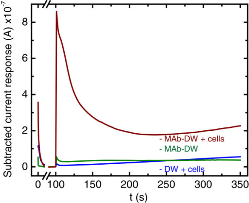 Chronoamperograms at (blue) the bare DW electrode, (green) the DW electrode with MAb at the concentration of 10 μg/mL, and (red) the MAb-DW electrode with cells (109 CFU/mL) at the working potential of 100 V vs. Ag/AgCl in citrate phosphate buffer (0.05 M, pH 5.5) solution.