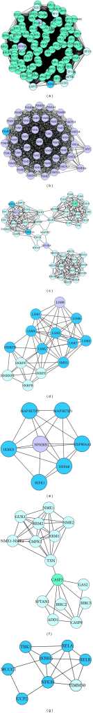 The subnetworks made up of highly connected regions and functions of the nodes in TCM deficiency pattern-related genes. Cycles represent nodes. All edges represent interactions between the nodes. Clusters with score >2 were considered to be significant (it represents the log of the probability that the network was found by chance).