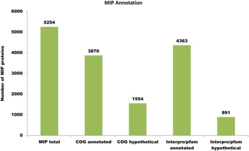 Comparative plot for annotation of M. indicus pranii (MIP) based on annotations in COG and InterPro/Pfam.