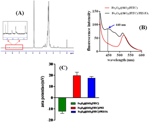 (A) 1H NMR spectra (300 MHz) of Fe3O4@SiO2(FITC)/PEI-FA nanoparticles in D2O. (B) Fluorescence emission spectra of Fe3O4@SiO2(FITC) and Fe3O4@SiO2(FITC)/PEI-FA nanoparticles. The fluorescence excitation peak was at a wavelength of approximately 440 nm indicating the successful coupling of PEI-FA to the particle surfaces. (C) Zeta potential measurements of Fe3O4@SiO2(FITC), Fe3O4@SiO2(FITC)/PEI and Fe3O4@SiO2(FITC)/PEI-FA nanoparticles in aqueous suspension.