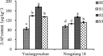 Effect of shading treatment on grain 2-AP content in grains. Vertical bars with different lower case letters above are significantly different at P = 0.05 by LSD tests. Capped bars represent SD.