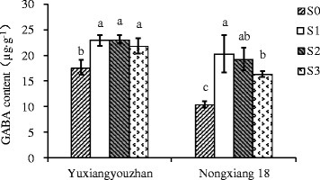 Effect of shading treatment on grain GABA content in grains. Vertical bars with different lower case letters above are significantly different at P = 0.05 by LSD tests. Capped bars represent SD.