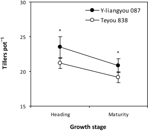 Tiller number at heading and maturity of rice cultivars Y-liangyou 087 and Teyou 838.Vertical bars represent SD (n = 6). * indicates significant difference between the two cultivars according to LSD (0.05).