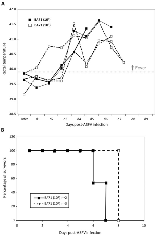 Virulence of ASFV BA71 strain.(A) Rectal temperatures were daily recorded after infection of pigs with 102 or 104 HAU50 of BA71. (B) Survival of pigs after infection with 102 or 104 HAU50 of BA71.
