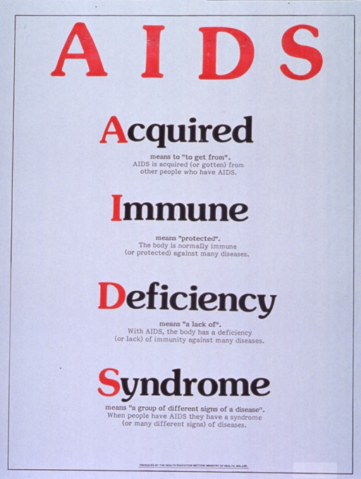 <p>White poster with black and red lettering.  Title at top of poster.  Poster is text only.  Center portion of poster features each word from the acronym AIDS, along with a definition and explanation of how the word relates to the disease.  Publisher information at bottom of poster.</p>