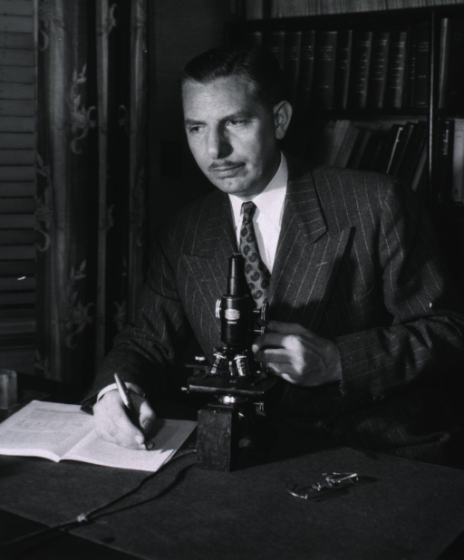 <p>Showing Dr. Alexander Wiener seated before a microscope.</p>