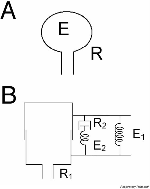 Two common and basic mechanical models of the lung. A: A homogeneously ventilated model consisting of a single elastic balloon (elastance E) served by a single flow-resistive pipe (resistance R). B: A homogeneous model again with a single airway (resistance R1), but with a Kelvin body consisting of two springs (E1 and E2) and a dashpot (resistance R2) to account for the viscoelastic behavior of the lung tissue.