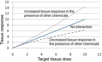 "The impact of pharmacodynamic (PD) interactions on tissue response. The term ""PD interaction"" refers to the case in which one unit of target tissue dose to chemical X in the presence of other chemicals leads to less (examples in Section 4.1) or more (examples in Section 4.2) than one unit of tissue response compared to exposure to chemical X by itself."