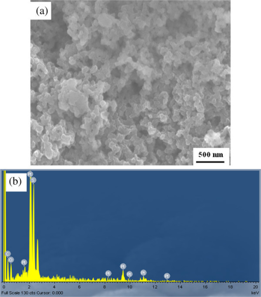 SEM image and EDX spectrum. (a) SEM image and (b) EDX spectrum of the PEDOT-PtNPs/SPC electrode. The PEDOT-PtNP composite was prepared under UV irradiation for 80 min (PEDOT-PtNPs80 min).