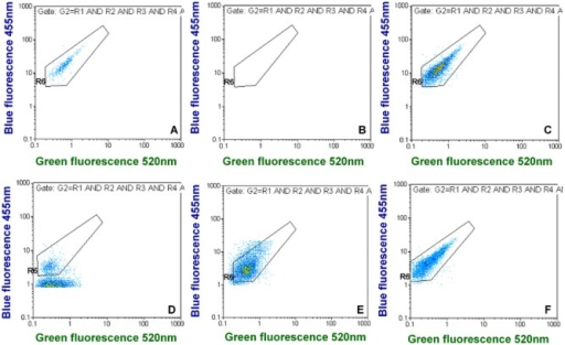 Examples for green versus blue fluorescence dot plots for different tap water samples. (A) shows quantification in spiked tap water and (B) is the corresponding negative control. (C–F) show different positive tap water samples with naturally occurring Lp cells. (D–F) indicate that environmental Lp cells may be smaller in some cases and display less fluorescence than spiked Lp cells grown in liquid culture. The complete FCM output for these examples can be found in Figs S1–S5, except for (C), which is from Fig. 6.