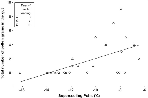 The affect of dietary pollen on supercooling point.Total number of pollen grains found in the guts of Bombus terrestris audax workers, plotted against their corresponding supercooling points (n = 14, 8 and 5 for 3, 7 and 14 day nectar-fed workers respectively), a significant relationship (R2 = 32.7%, p<0.01).
