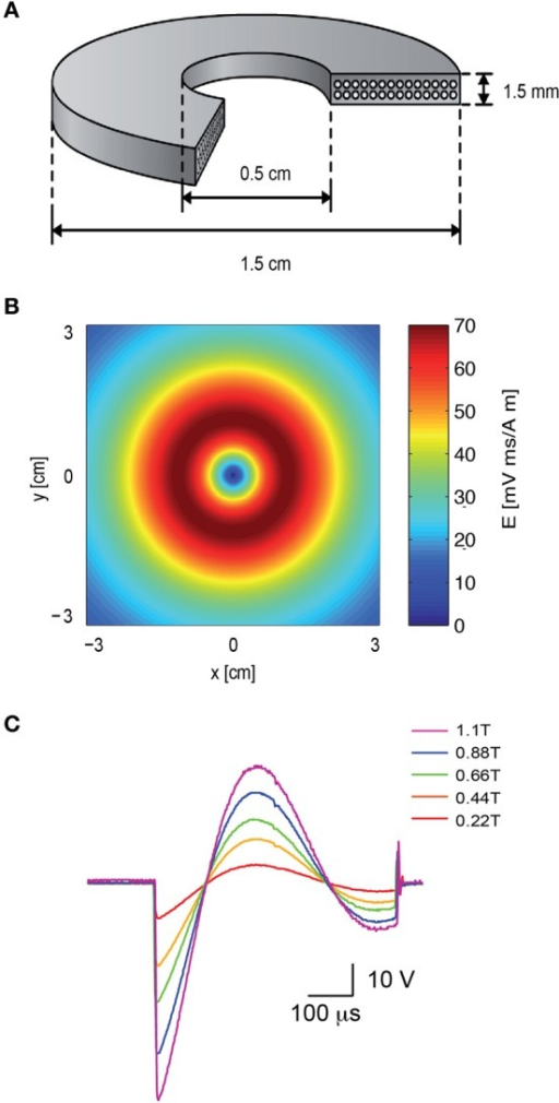 The electromagnetic field induced by the magnetic coil. (A) Schematic illustration of the structure of the magnetic coil. The magnetic coil was wound from copper wire of 0.75 mm diameter and constructed with two layers with 14 turns each. (B) The induced electric field of the coil was calculated with MATLAB, assuming a distance of 2 mm from the brain slice, and plotted along the x–y plane. (C) The shape and magnitude of the magnetic pulse were recorded from our coil with a pick-up coil (radius 1 cm). The signal was recorded with five different voltages applied to the capacitor bank by the high voltage power supply. The maximal magnetic field at the center of the coil is noted in color in the legend. The scale bar displays the raw voltage recorded from the pick-up coil.