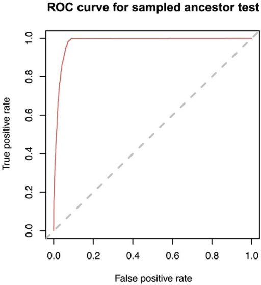 ROC curve for identifying sampled ancestors based on simulated data (transmission process).The posterior distribution of trees obtained from a Bayesian MCMC analysis of simulated sequence data can be used to detect sampled ancestors. We identify a node as being a sampled ancestor if the posterior probability that the node is a sampled ancestor is greater than some threshold. The curve is parameterised by the threshold and shows the trade-off between true positive rate (sensitivity) and false positive rate (specificity) for different values of the threshold (any increase in sensitivity will be accompanied by a decrease in specificity). The dashed diagonal line corresponds to a 'random guess' test. The closer the ROC curve to the upper-left boarder of the ROC space (the whole area of the graph), the more accurate the test. The optimal value of the threshold for this curve is 0.45.