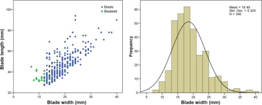Scatter plot of blade widths and lengths (left) and histogram of blade widths (right) for the combined sequence WOG1-BSP.