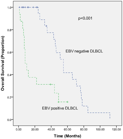 Overall survival (OS) in EBV-positive (study group) and EBV-negative (control group) elderly DLBCL patients in a matched case-control analysis.
