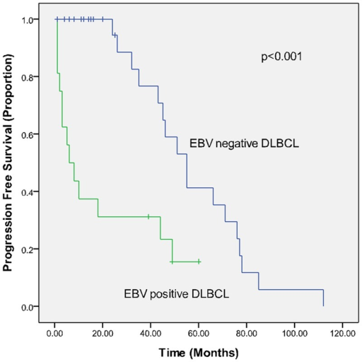 Progression-free survival (PFS) in EBV-positive (study group) and EBV-negative (control group) elderly DLBCL patients in a matched case-control analysis.