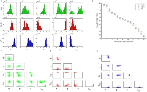 Analysis of bacteria-dependent parameters in the pneumolysin activity study.(A) One-dimensional parameter distributions of bacteria-dependent parameters: h, q, ν, ξnl, ξnb. The top row (green) shows ensembles for H+/C- bacteria. The middle row (red) shows ensembles for H2-/C+ bacteria. The bottom row (blue) shows ensembles for wild-type (WT) bacteria. (B) Principal values computed from singular-value decomposition of ensembles for each bacterial strain. (C-E) Two-dimensional parameter correlations for H+/C- (C) H2-/C+ (D) and wild-type (E) bacteria.