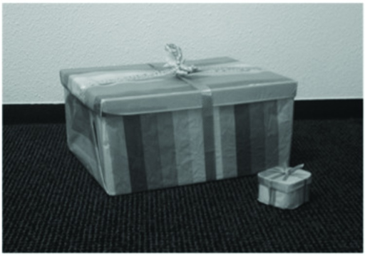 Representations of first prize and consolation prize (respectively the large and the small package).