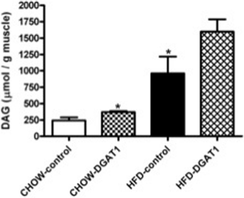 Three weeks of high-fat feeding is associated with an increased TA DAG content compared to rats on CHOW.DGAT1 overexpression leads to an increase in TA DAG content in rats on CHOW and tended to increase DAG content in rats on HFD. Data are expressed as mean ± SEM (n = 6). *P<0.05 CHOW-DGAT1 and HFD-control vs. CHOW-control.