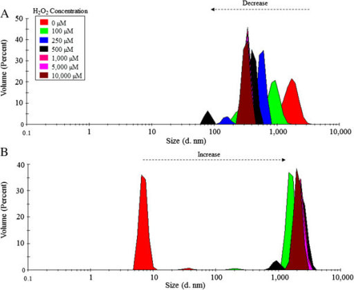 Dynamic Light scattering (DLS) analysis of 0.4 mg/mL of VP6NT (A) and VP6U (B) exposed to MCO performed with 150 µM of FeCl2 and different H2O2 concentrations for 1 h. Experiments were performed in triplicate, and a representative size distribution for each condition is shown.
