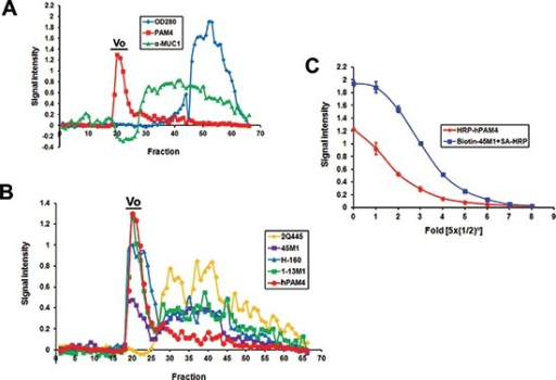 Immunoreactivity of fractions eluted from Sepharose CL-2B(A) Capan-1 cell culture supernatant was separated on a Sepharose CL2B column with the eluted fractions analyzed by hPAM4 and α-MUC1. (B) The void-volume (Vo) fractions of Capan-1 reacted positively with three anti-MUC5AC antibodies (45M1, 1-13M1 and H-160), but not with 2Q445, which recognizes the unglycosylated tandem repeat region of MUC5AC. (C) The Capan-1 void-volume peak, following capture by 2-11M1, could be detected directly by HRP-hPAM4, or indirectly by biotin-45M1 plus SA-HRP.