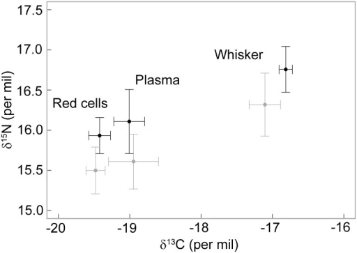 Plasma, red blood cells and mean whisker δ13C and δ15N values of male (black) and female (grey) Australian fur seals sampled in winter.Values are mean ± standard deviation.