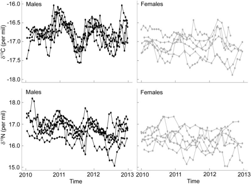 Whisker δ13C and δ15N values of male (black lines) and female (grey lines) Australian fur seals over three consecutive years.