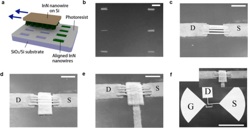 "(a) Schematic drawing of the ""transfer printing"" process. (b) SEM image of InN nanowires in array groups derived from ""transfer printing"" process. Scale bar: 5 μm. (c) SEM image of the aligned nanowires with source and drain electrodes deposited. Scale bar: 2 μm. (d) SEM image of the nanowire device with gate 300 nm Al2O3 deposited. (e) SEM image of the nanowire FET based on 5 aligned nanowires. Scale bar: 2 μm. (f) SEM image of the whole device. Scale bar: 100 μm."