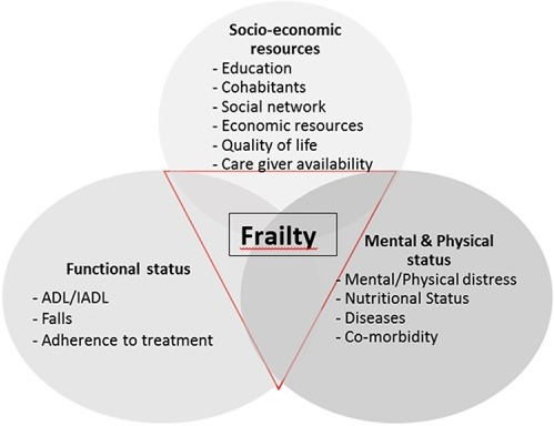 Characteristic of frailty according to its domains and indicators.