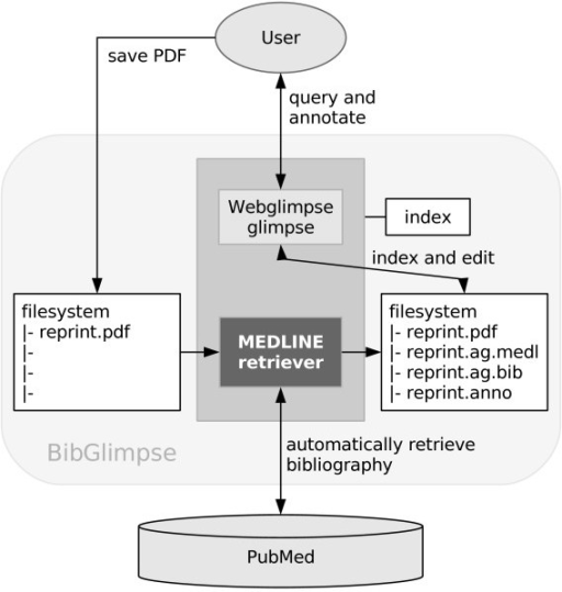 BibGlimpse scheme. The figure schematically illustrates how BibGlimpse incorporates automated Medline retrieval into the Webglimpse search environment. Saved PDFs are automatically matched with a Medline record and indexed. For integration with external tools, all data are directly available in flatfile format.