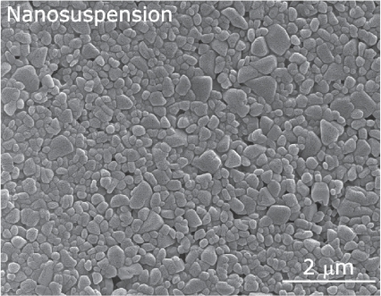 Scanning electron microscopic picture of a nanosuspension prepared with high pressure homogenization.Used with permission from Möschwitzer (2005).